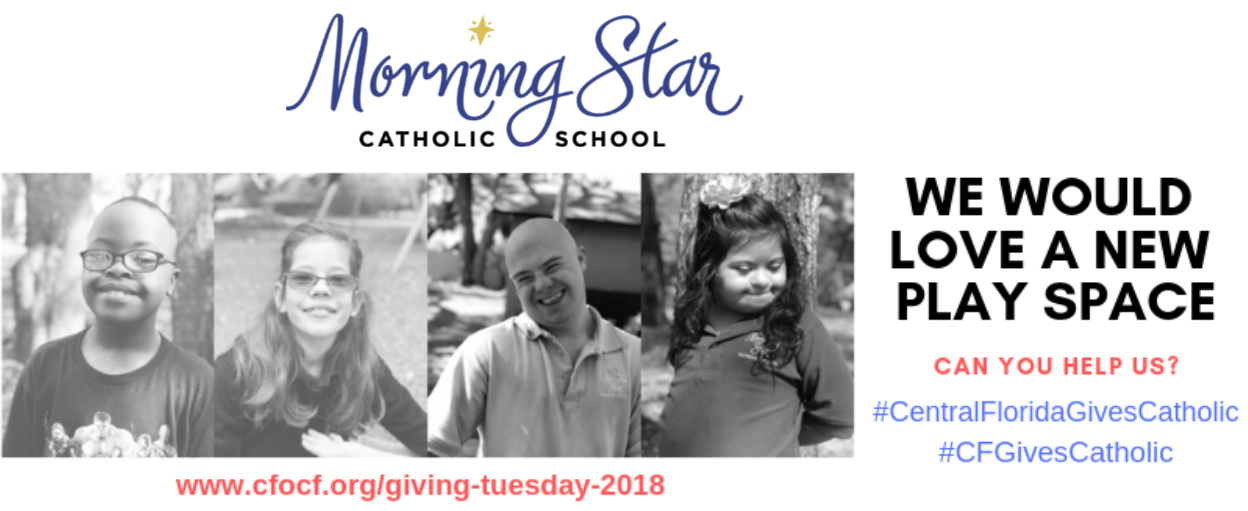Giving Tuesday Morning Star Info Graphic