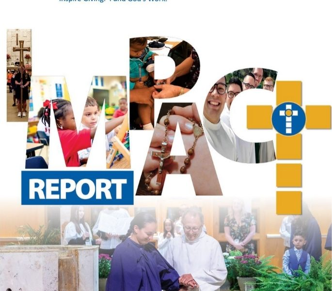 2018 - 2019 Impact Report Cover